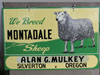 Montadale Farm Sheep Enamel Sign